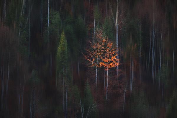 Motion blur creativity in Photoshop CC