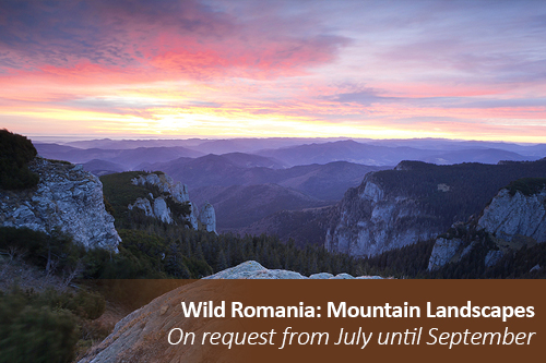 ON REQUEST 1ON1 Wild Romania: Mountain Landscapes