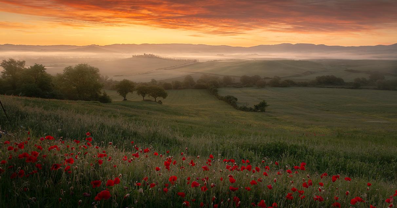 Toscana-2020-mai_0004_IMG_0666