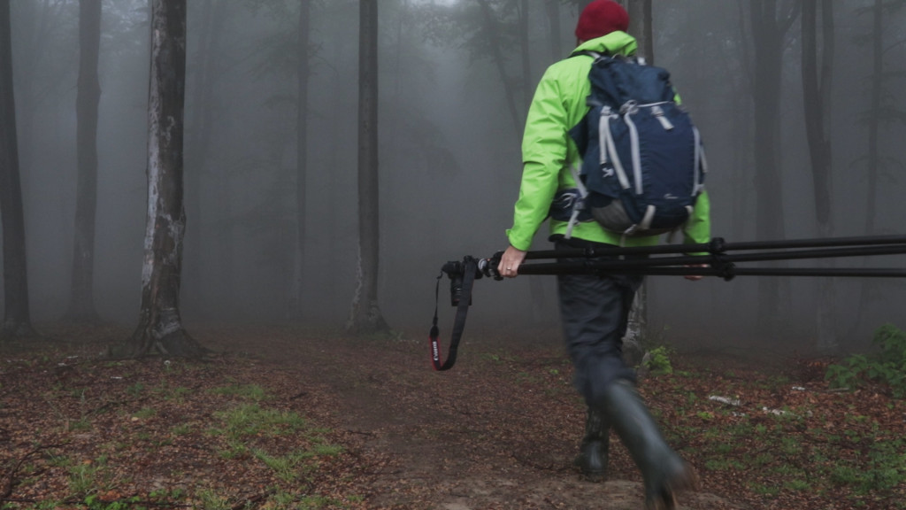 Landscape photography vlog – Tips for photographing in foggy forests