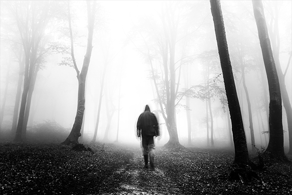 Foggy forest selfies – photography vlog