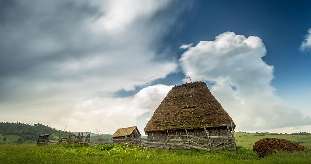 Rural Romania 2020_0002_IMG_7998